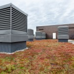 monodraft louver ventilation and Sedum green roof on Notting Hill Ealing High School