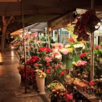 Flower stalls in Valencia city centre at night